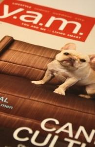 YAM Magazine - Small Kitchen